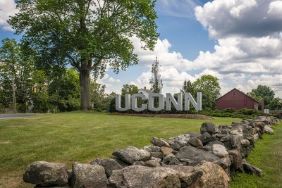 The UConn sign on a sunny summer day.